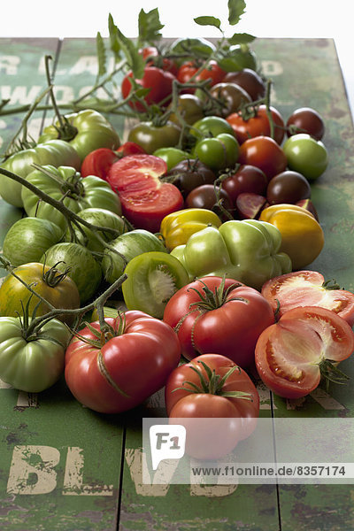 Vielfältige Tomatenarten (Solanum lycopersicum) auf grünem Holz  Studioaufnahme