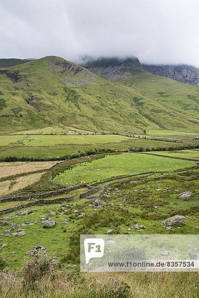 Großbritannien  Wales  Gwynedd  Ogwen Valley