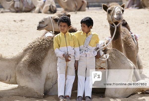 Vereinigte Arabische Emirate  VAE  Wettrennen  Rennen  Junge - Person  Jockey  Naher Osten  Kamel