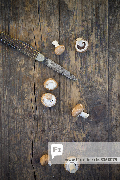 Frische braune Pilze (Agaricus) und ein Taschenmesser auf Holztisch  Studioaufnahme