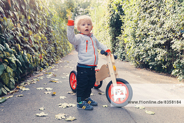 Little boy with wood tricycle
