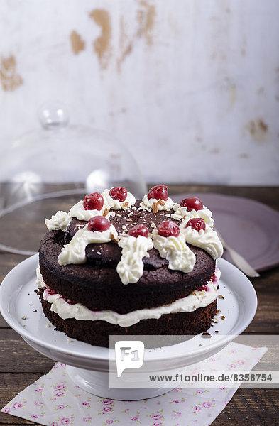 Schokoladenkuchen gefüllt und garniert mit Kirschen und Sahne auf Tortenständer  Studioaufnahme