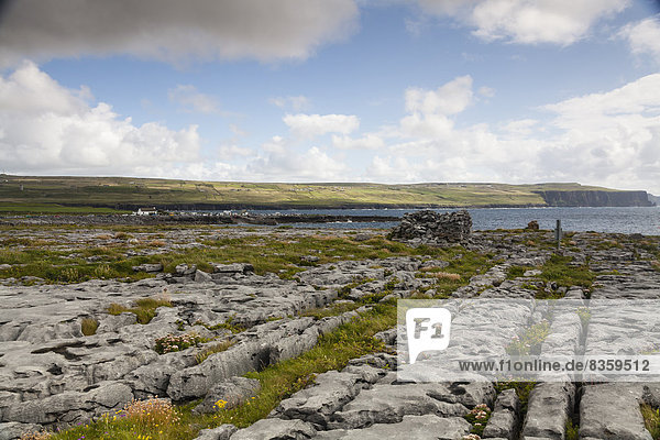 Irland  County Clare  Coastal landscape near Doolin