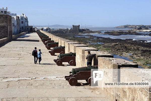 Portuguese cannons along the ramparts  Essaouira  Atlantic coast  Morocco  North Africa  Africa