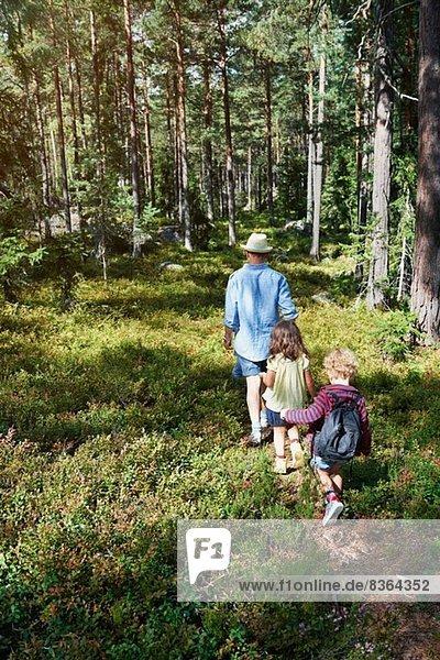 Vater und Töchter wandern durch den Wald