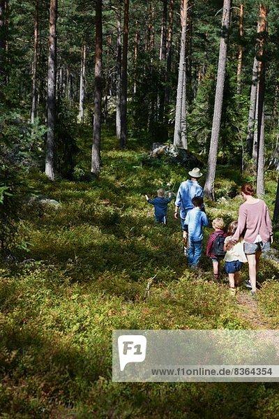 Familienwanderung durch den Wald