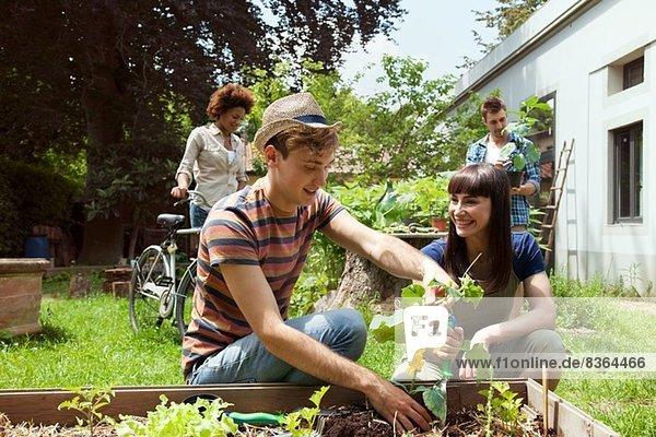Freunde Gartenarbeit