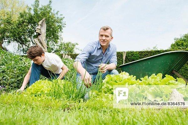 Vater und Sohn Gartenarbeit