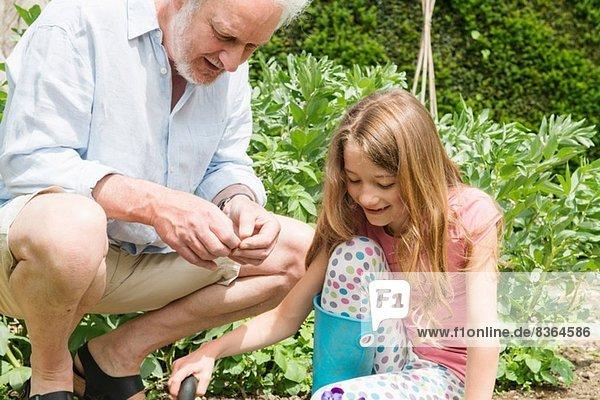 Großvater und Enkelin Gartenarbeit