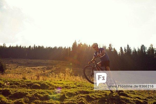 Mature man mountain biking  Styria  Austria