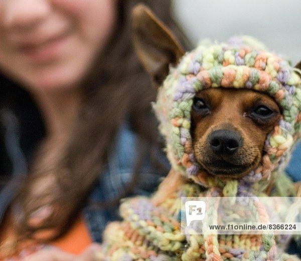 Hund mit Strickmütze