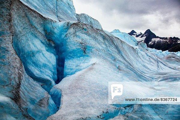 Mendenhall Gletscher  Alaska  USA