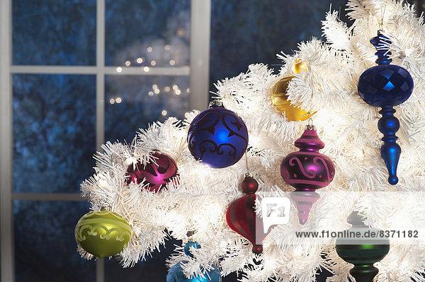 Vereinigte Staaten von Amerika USA Anschnitt Farbaufnahme Farbe Fenster hängen weiß frontal Weihnachtsbaum Tannenbaum Dekoration Mondschein Kalifornien