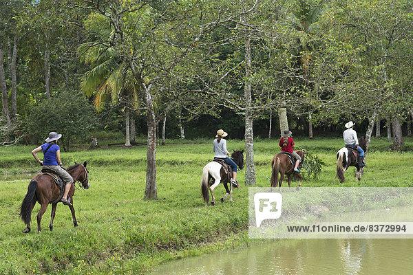 Ecke Ecken folgen reiten - Pferd vorwärts Finca Honduras
