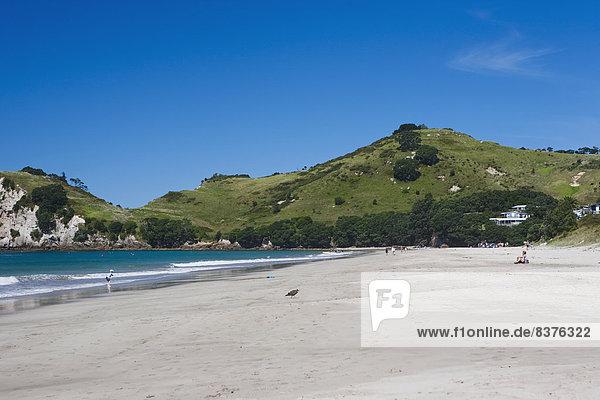 Strand Küste neu Neuseeland Halbinsel