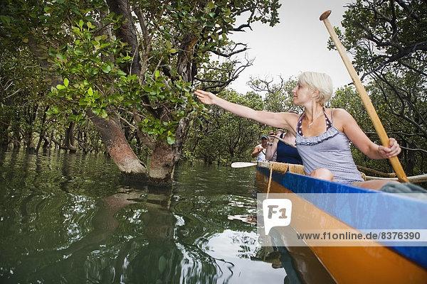 Führung Anleitung führen führt führend Insel paddeln Bucht Maori Neuseeland
