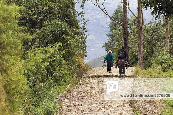 führen  Frau  reiten - Pferd  Peru