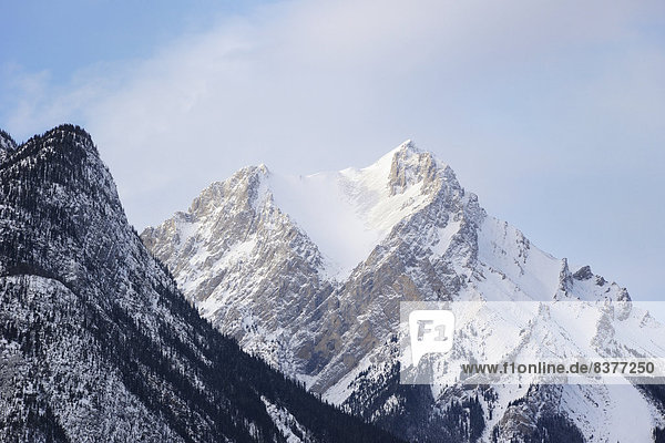 Jasper Nationalpark  Rocky Mountains  Alberta  Kanada  kanadisch