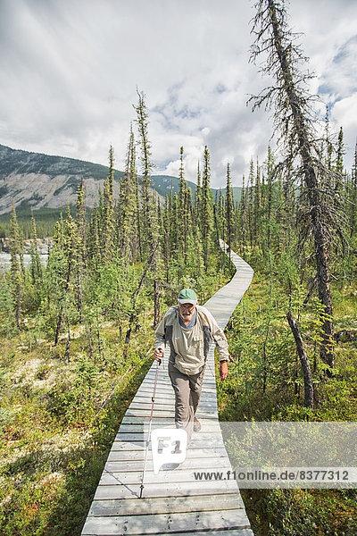 nahe  Mann  gehen  Holzweg  vorwärts  Kanada  Northwest Territories