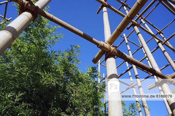 Bambusgerüst  naturnaher Baustoff  Hamburg  Deutschland