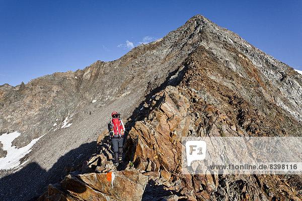 Bergsteiger beim Aufstieg zum Gipfel des Wilden Pfaffs  Südtirol  Italien