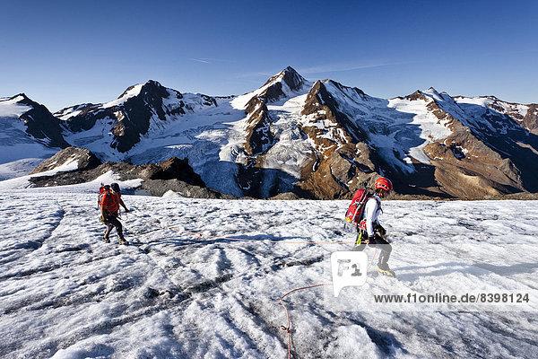 'Bergsteiger auf dem Gletscher ''Gepatschferner''  hinten die Weißkugel  Südtirol  Italien'