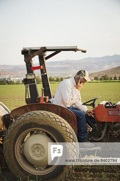 benutzen  Europäer  Telefon  Traktor  Nutzpflanze  Feld  Bauer  Handy