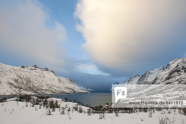 Landschaft am Ersfjord  Ersfjordbotn  Troms  Norwegen