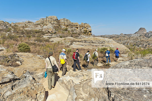 Hikers on trail through rocky landscape  erosion landscape  Isalo National Park  near Ranohira  Madagascar