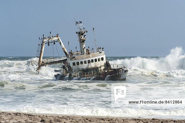 Schiffswrack zwischen Swakopmund und Henties Bay  Region Erongo  Namibia