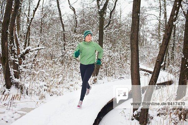 Weibchen läuft im Winter auf erhöhten Waldstegen