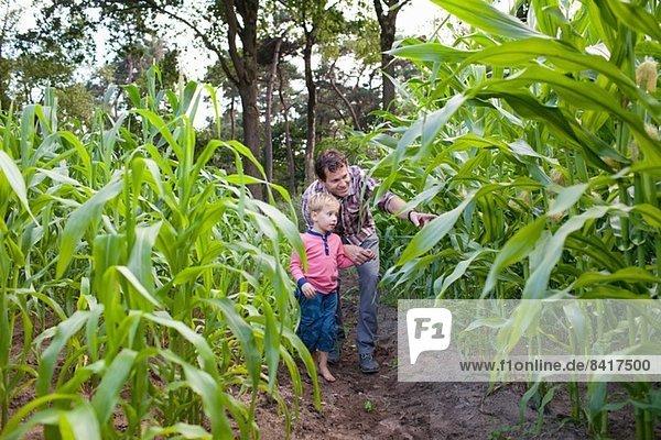 Bauer und Sohn im Ackerbau