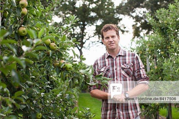 Bauer im Apfelgarten stehend