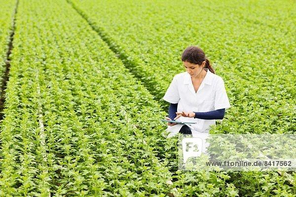 Wissenschaftler in Reihen von Pflanzen im Gewächshaus  hält digitale Tablette