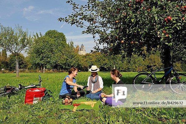 Frankreich  Westeuropa  Picknick  Fahrradfahrer  jung  Obstgarten  Apfel