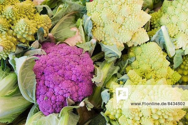 Gemüse  Blumenkohl  Italien  Markt  Venedig