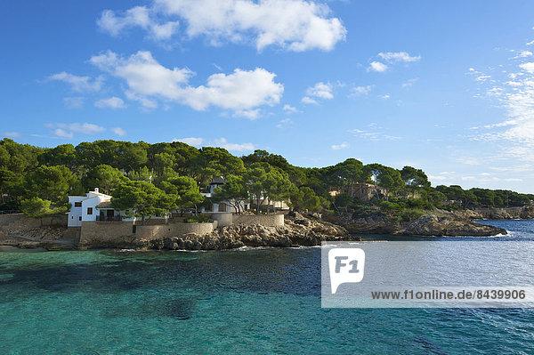 Außenaufnahme Landschaftlich schön landschaftlich reizvoll Europa Landschaft Küste niemand Meer Balearen Balearische Inseln Bucht Cala Ratjada Mallorca Mittelmeer Spanien