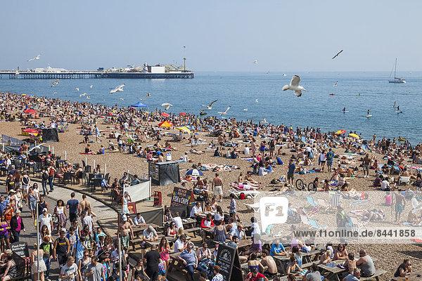 Europa  Mensch  Menschen  Strand  britisch  Großbritannien  Küste  Menschenmenge  Tourist  Meer  Urlaub  voll  Brighton  bevölkert  East Sussex  England  Sussex  Tourismus