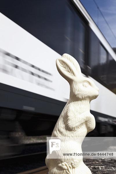 Osterhase überlebt den Zug
