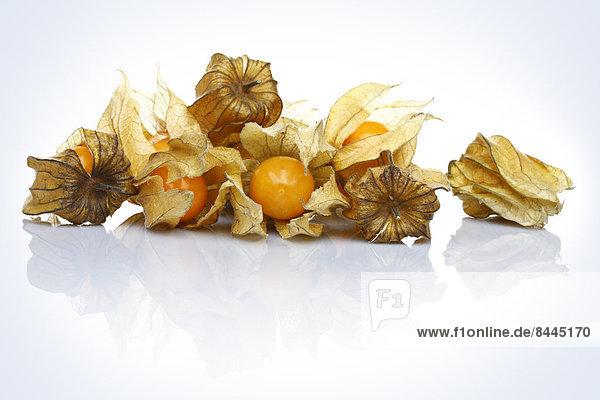 Physalis Früchte  Nahaufnahme