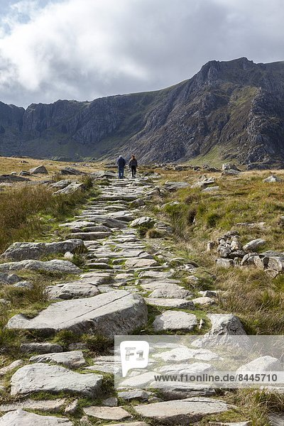 Europa  Berg  Großbritannien  Tal  frontal  wandern  Gwynedd  Wales