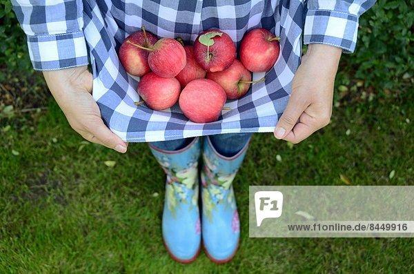 Frau mit gesammelten Äpfeln  close-up