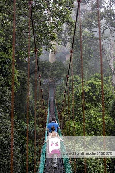 Weg  Tal  Tourist  Baldachin  Südostasien  Asien  Malaysia  Sabah