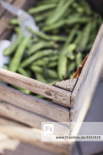 Selektiver Fokus der Holzkiste mit grünen Erbsen am Marktstand