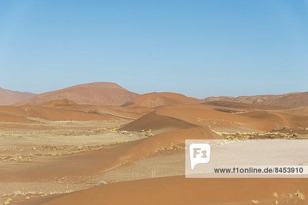 Dünenlandschaft  Sossusvlei  Namib-Skelettküste-Nationalpark  Namibia