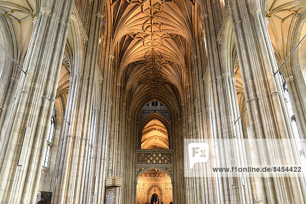 Langschiff  Kathedrale von Canterbury  Canterbury  Kent  England  Großbritannien