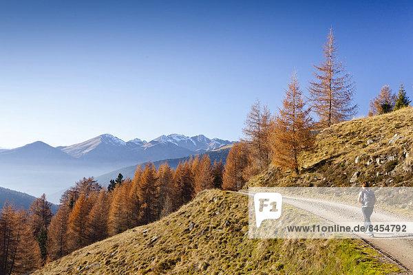 Wanderer beim Abstieg von der Getrumalm bei Reinswald im Sarntal  Südtirol  Italien