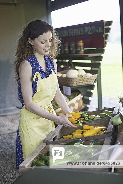 Ein biologischer Obst- und Gemüsebetrieb. Eine junge Frau sortiert Gemüse.