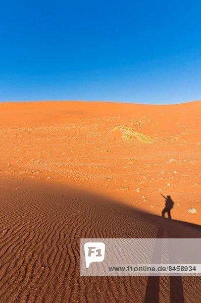 Namibia  Namib  Namib Naukluft Nationalpark  Afrika  Sossusvlei