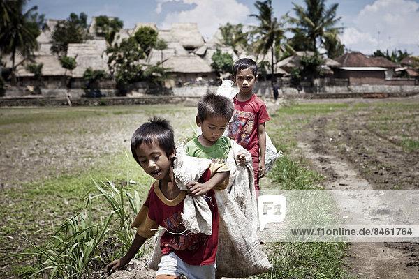 Indonesien Lombok